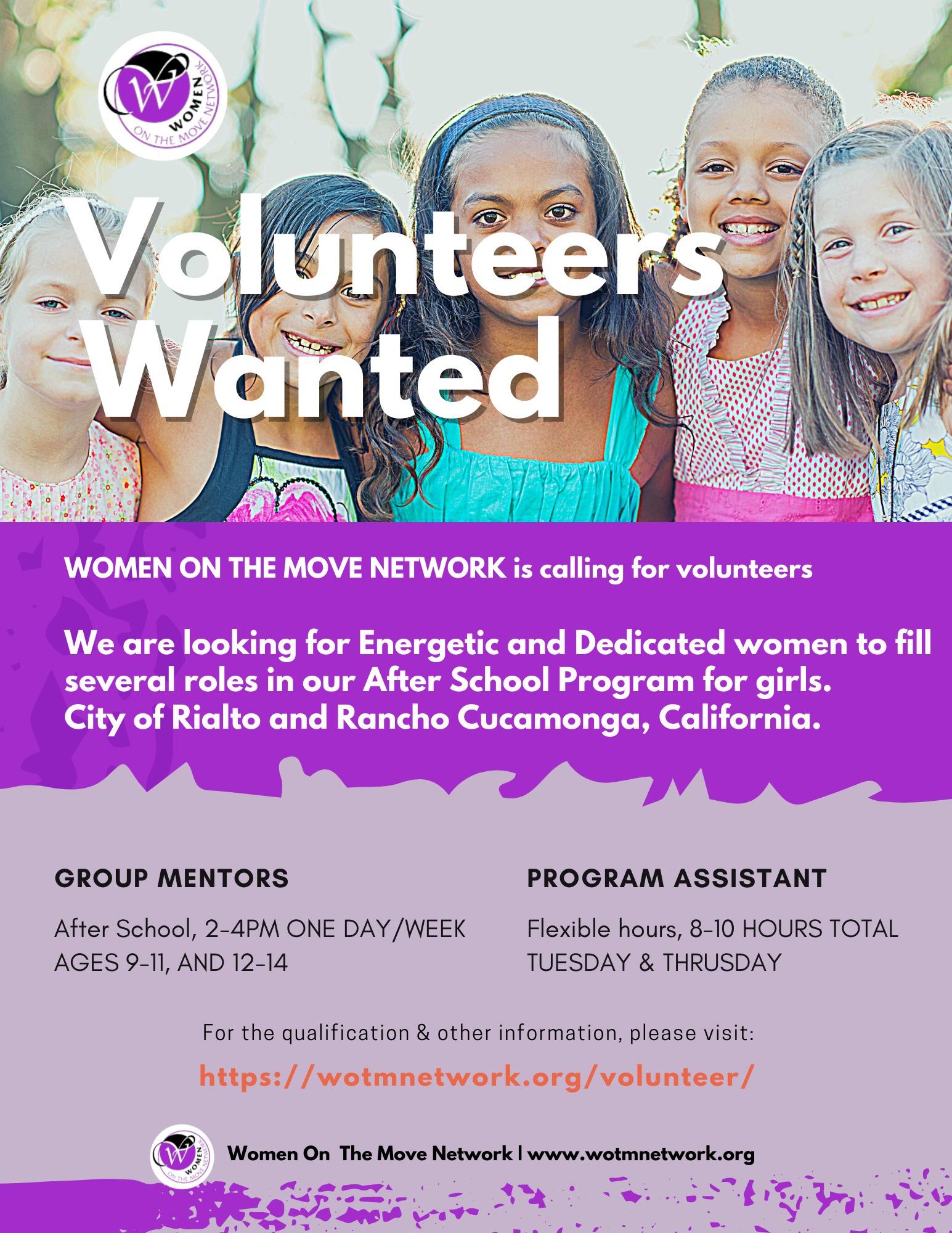 Volunteers Wanted Flyer
